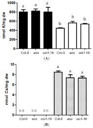 ijms free full text cesium inhibits plant growth through