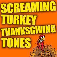 hahaas comedy ringtones screaming turkey thanksgiving ringtones