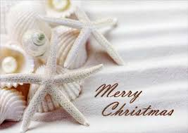 tropical christmas cards white starfish and shells tropical christmas card by lpg greetings