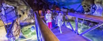exploris aquarium visitors center u0026 seal sanctuary home