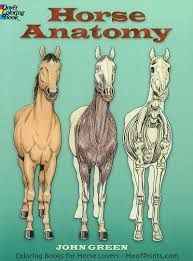 horse anatomy coloring book www hoofprints com