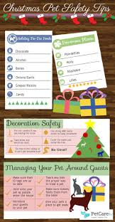 13 best images about holiday pet decoration safety on pinterest