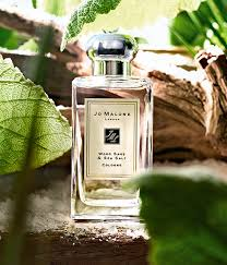 best light clean smelling perfume new jo malone scent wood sage and sea salt love the sound of it