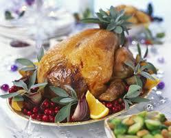 41 best cocono chompipe pavo guanajo turkey guajolote images