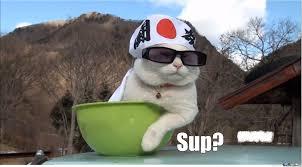 Sup Meme - sup by rambukk meme center