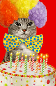 birthday cat ittude greeting card happy birthday printable card