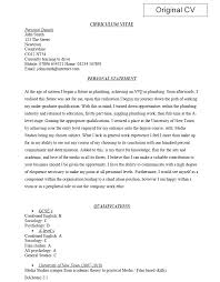 Profile Examples For Resumes by Doc 638479 Personal Summary Cv Personal Statement 8 Personal