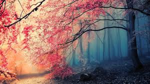 Beautiful Wallpapers Beautiful Backgrounds For Pc Page 2 Of 3 Wallpaper Wiki