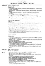 sle resume for newspaper journalist salary reporters notebook content writer resume sles velvet jobs