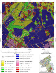 Forest And Waves State Of by Forests Free Full Text Satellite Based Derivation Of High