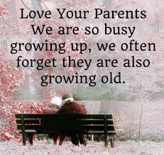 most touching fathers day quotes your parents growing