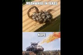 Funny Texas Memes - 15 more hilarious texas memes to keep you laughing