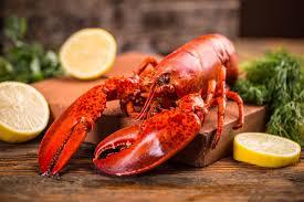 homard cuisine recettes de homard