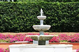 australian garden flowers garden u0026 flower events 2015 melbourne u0026 vic melbourne