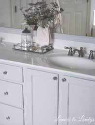 Stein Mart Bathroom Accessories by Master Bathroom Makeover U2013 Lemons To Lovelys