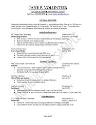 curriculum vitae layout 2013 nissan cv resume outline fungram co