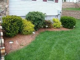 Basic Garden Ideas Simple Garden Designs Back Garden Goes From Basic Simple Basic