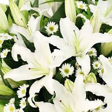 white lilies white bouquet from 15