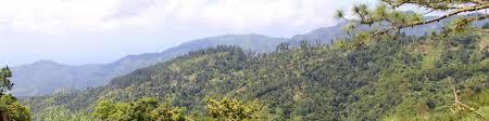 blue mountains jamaica wikitravel
