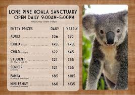 opening hours and prices lone pine koala sanctuary