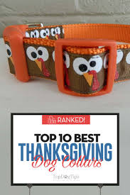 top 10 best thanksgiving collars for 2017 s