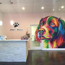 dogs secret ocoee windermere home facebook drag to reposition