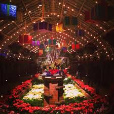 phipps conservatory christmas lights it s the most wonderful time of the year in pittsburgh jim