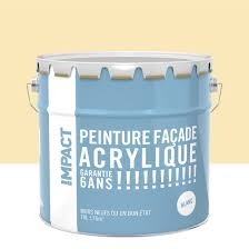 Pierre Allume Feu Leroy Merlin Peinture Façade Acrylique Impact Ton Pierre 10 L Leroy Merlin