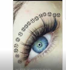professional eyelash extension 47 best premade volume eyelash images on eyelash