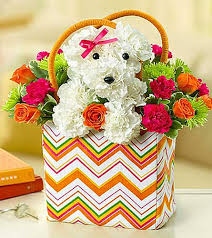 cheap mothers day flowers s day flowers for dog discounts and promo codes