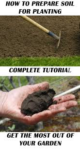 Vegetable Garden Preparation by 137 Best Gardening Images On Pinterest Gardening Vegetable