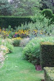 native hedging plants uk which hedge is right for my garden the middle sized garden