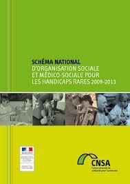 Schéma national handicaps rares 20092013 by Ministères sociaux  issuu