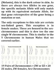 corn snake ebook