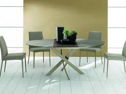 table ovale avec rallonge table ronde contemporaine avec rallonge