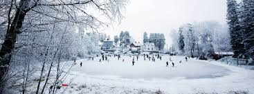 outdoor hockey rink toronto backyard and yard design for village
