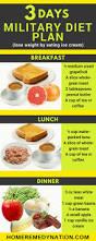 best 25 military diet menu ideas on pinterest military diet