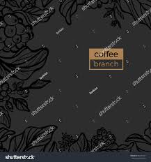template branch coffee tree leaves natural stock vector 684654241