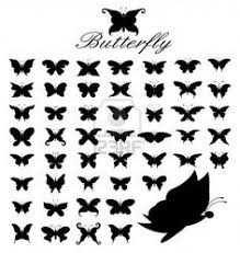 tiny butterfly search pinteres