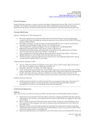 exle executive resume excel resume exles pertamini co