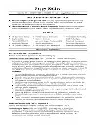 best resume layout hr generalist resume sle of hr manager best of human resources manager resume