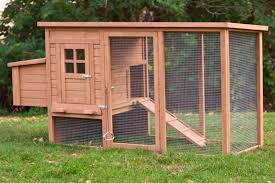 Budget Backyard Budget Backyard Chicken Coops Tbn Ranch Chicken Keeping