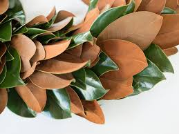 magnolia wreath and garland