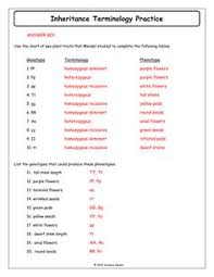 10 advanced genetics problems docx classroom pinterest