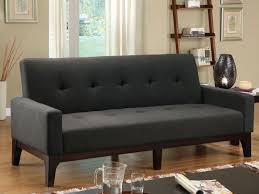 Convertible Sofa Bed Furniture Sleek Room With Ladder Shelves And Convertible