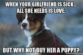 Sick Puppy Meme - when your girlfriend is sick all she needs is love but why not on