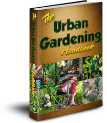 discover how you can grow plants with an urban and indoor garden