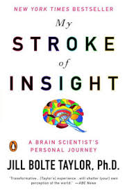 Paul De Man Blindness And Insight My Stroke Of Insight A Brain Scientist U0027s Personal Journey By Jill
