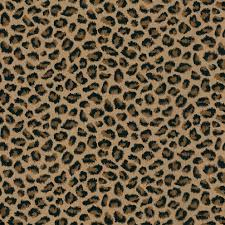 animal print wallpaper for bedroom leopard print wallpaper how fabulous do an accent wall or