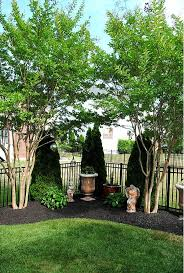Backyard Landscaping Ideas For Privacy by 37 Best Green Fences For Back Yard Images On Pinterest